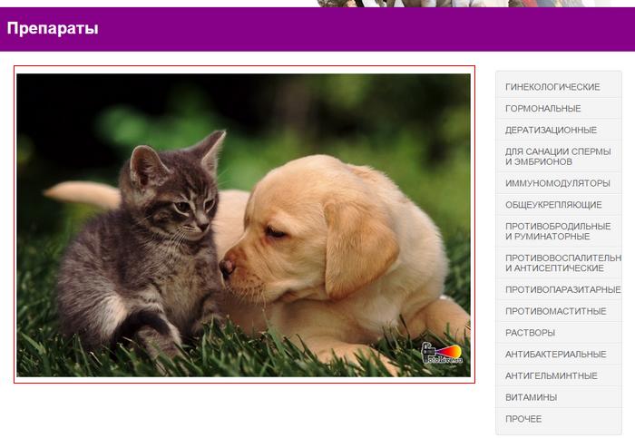 Компоновка главной страницы каталога препаратов